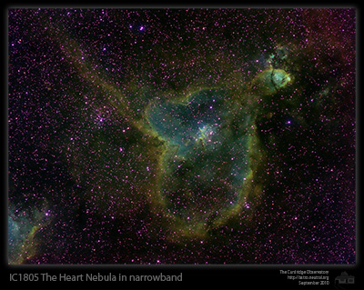 heart nebula astro in narrowband